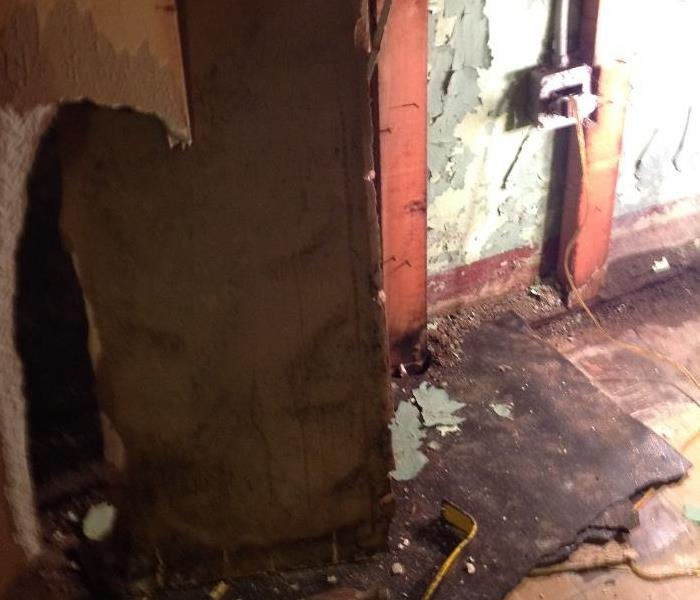 Basement mold due to foundation leak in Winnetka Before