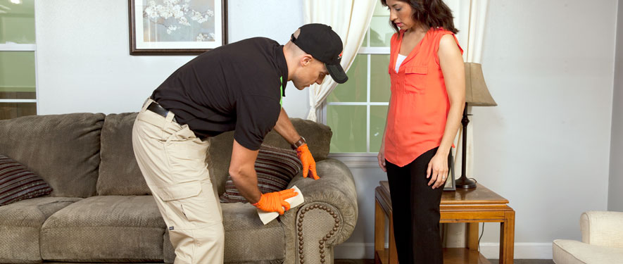 Kenilworth, IL carpet upholstery cleaning