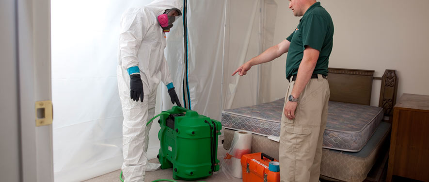 Kenilworth, IL mold removal process